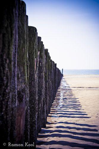 strandpalen - Google zoeken