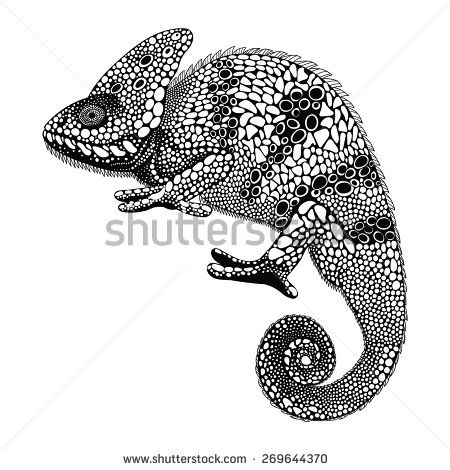 Zentangle Stylized Chameleon Lizard Hand Drawn Reptile Vector