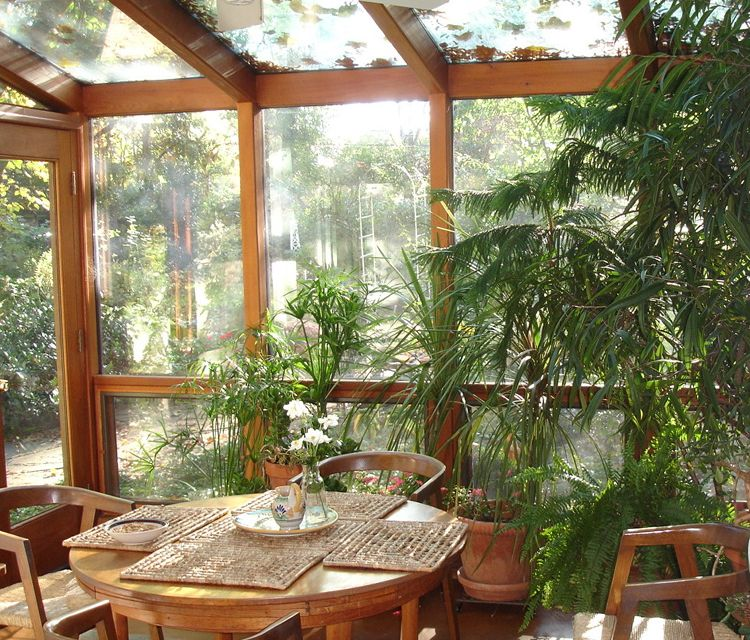 Green Plants Make Sunrooms Pretty