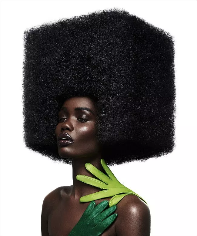 Wild Afro Hair Style Editorial With Afro Hairstyles Afro Wigs Artistic Hair