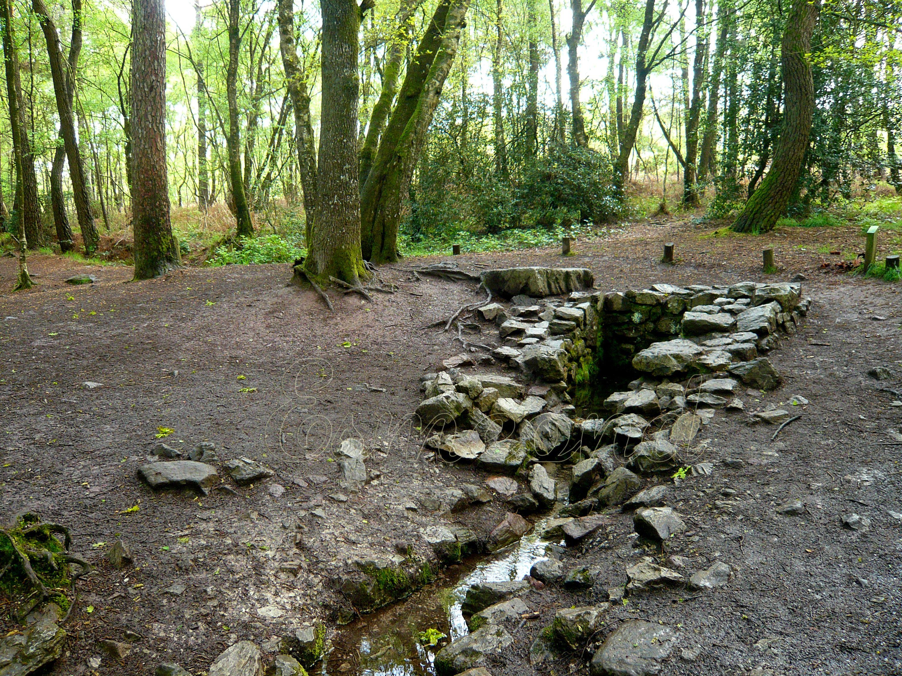 La fontaine de Barenton, forêt de Brocéliande, France