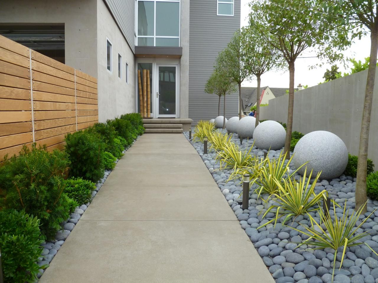 walkway to contemporary home lined with neat landscaping dog