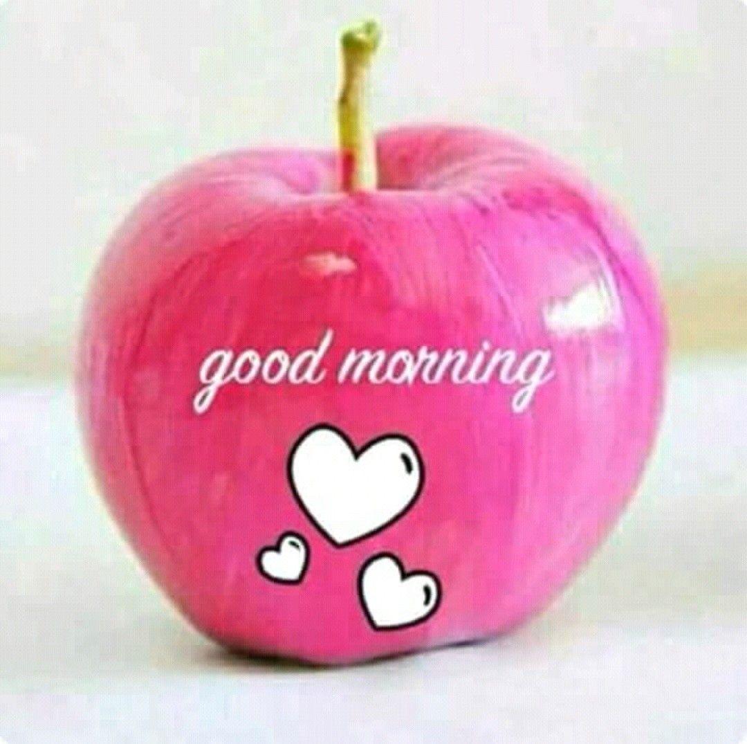 صباح الخير يا عمري Good Morning Gif Images Good Morning Gif Good Morning Greetings