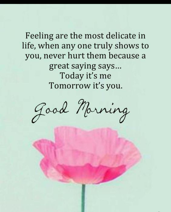 50 morning inspirational quotes #goodmorninginspirationalquotes #goodmorningquotesinspirational #inspirationalgoodmorningquotes #morningquotes #morning