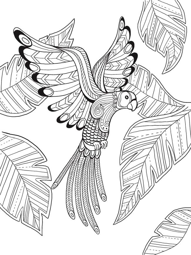 Welcome To Dover Publications Bird Coloring Pages Animal Coloring Pages Mandala Coloring Pages