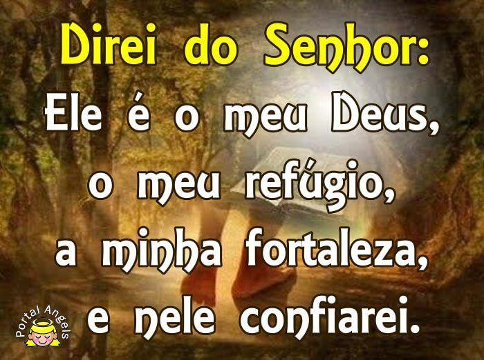 Bom Dia Meu Anjo: Salmo 91 Para Imprimir, Whatsapp E Facebook Imagem E MP3