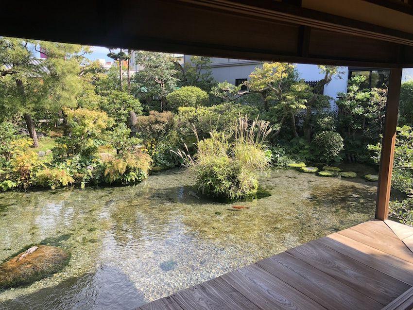 湧水庭園 四明荘 旧伊東氏庭園 Shimeiso Garden Shimabara Nagasaki 日本庭園 薬草 植物栽培