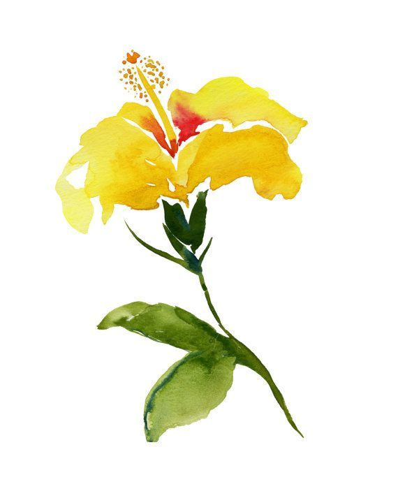 Yellow Hibiscus Watercolor Art Island Chic Coastal