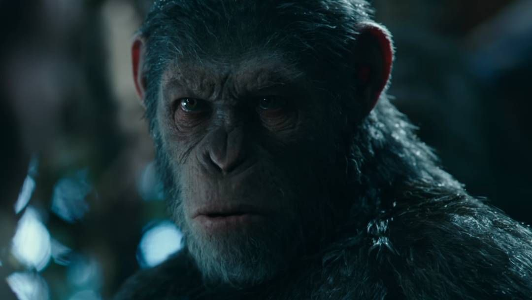 War For The Planet Of The Apes Is Winning The Box Office Battle Against Spider Man Planet Of The Apes Apes Dawn Of The Planet