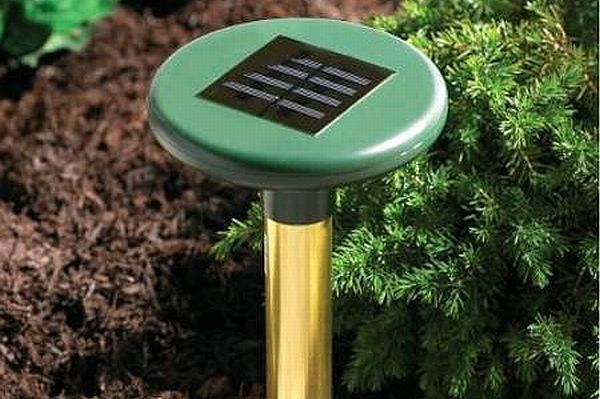 17 Best 1000 images about Indoor Gardening Gadgets on Pinterest