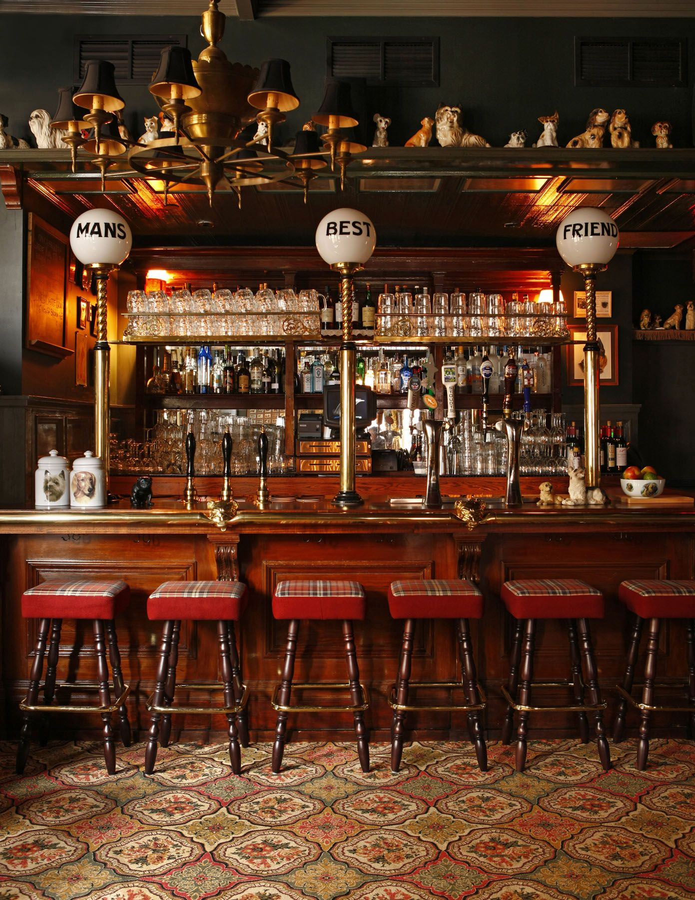Dog Room Bar at The Dandelion. | All Things Dog | Pinterest | Dog ...