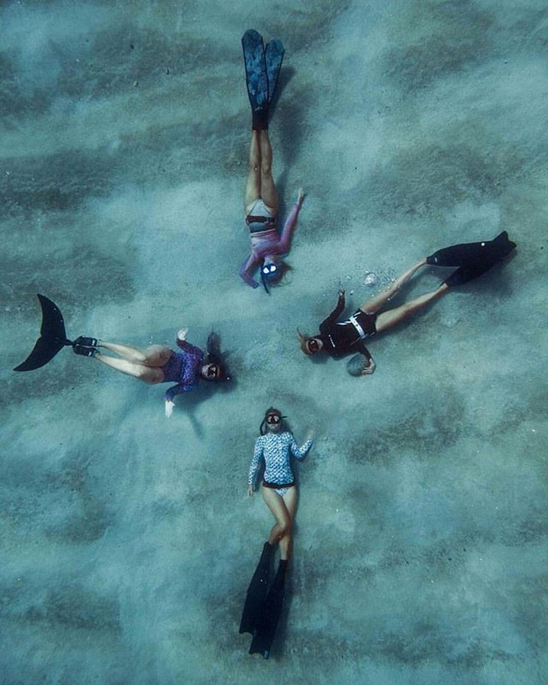 Pin By AaronC On Snorkeling And Free Diving