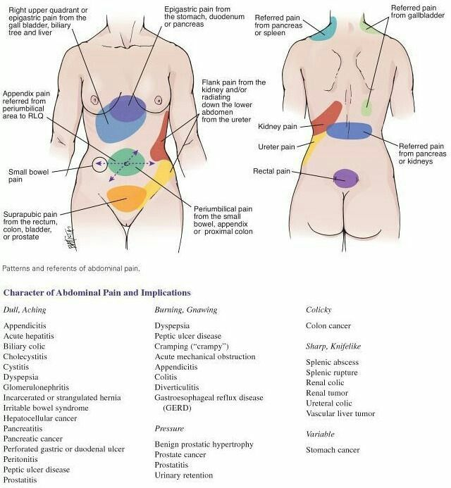 prostate referred pain