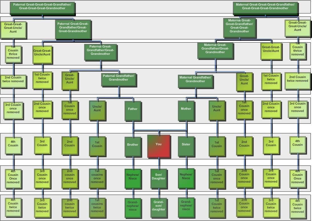 Surprises in the family tree genealogy chart and cousins surprises in the family tree more ccuart Gallery