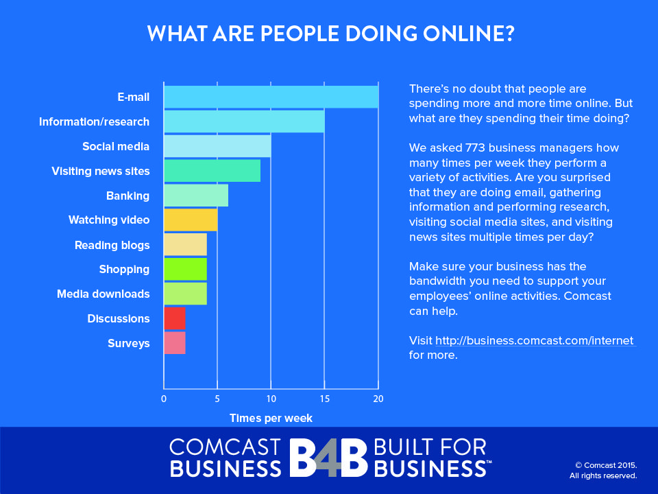 What Exactly ARE Businesses Doing Online? Online