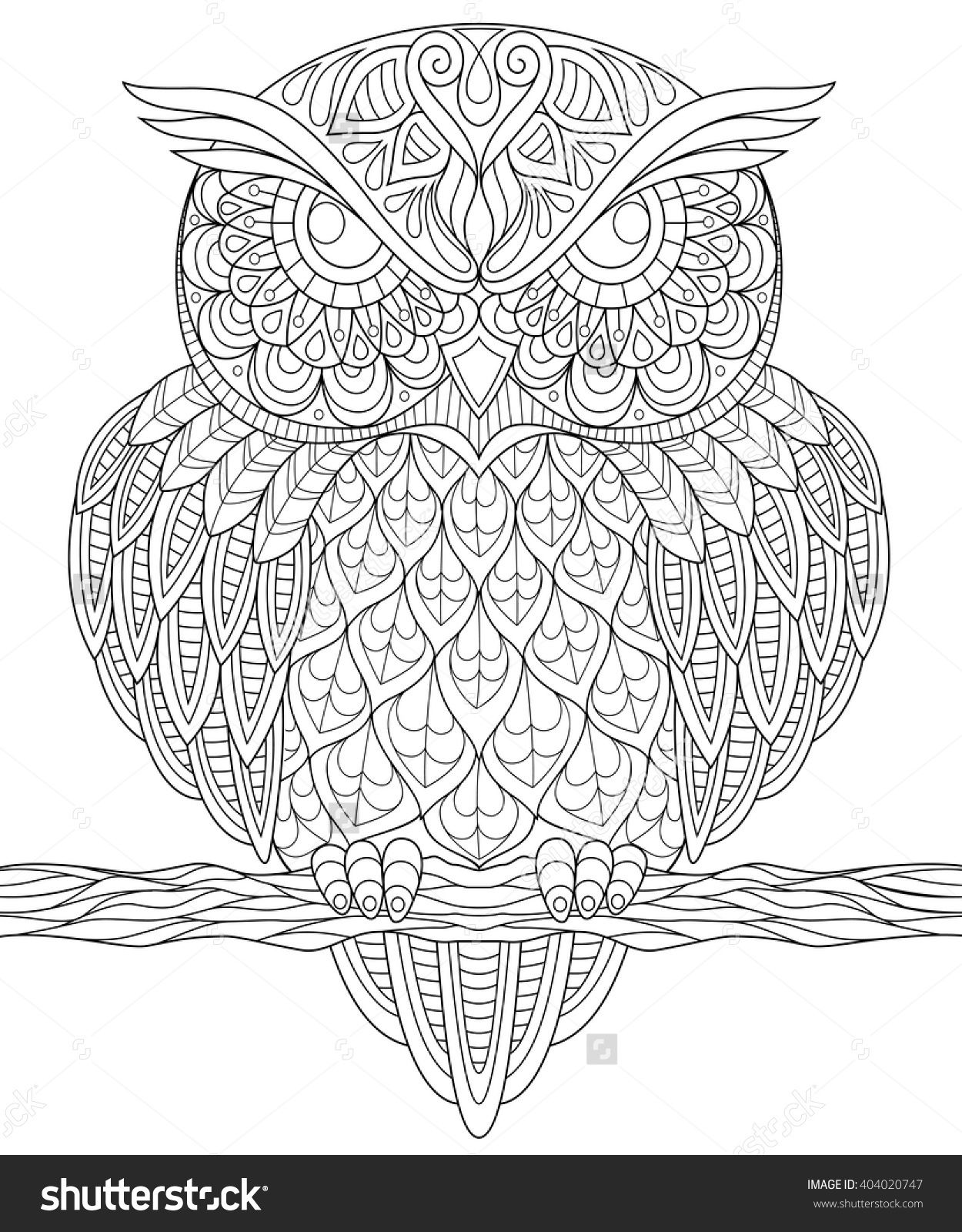 Owl Adult Antistress Coloring Page Black And White Hand Drawn