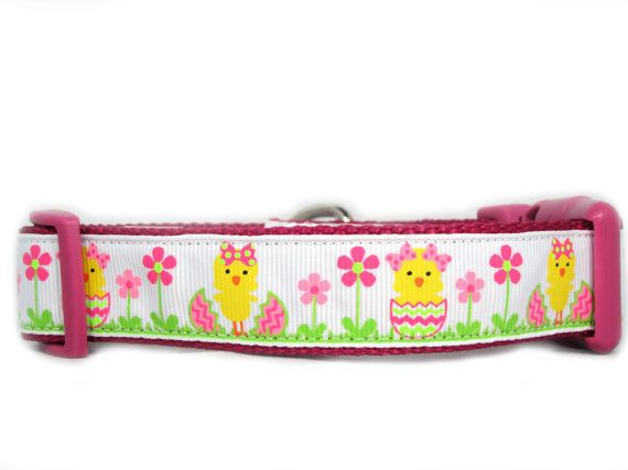 Easter Chick 1 inch wide Dog Collar flowers egg by Apolloscloset, $12.00