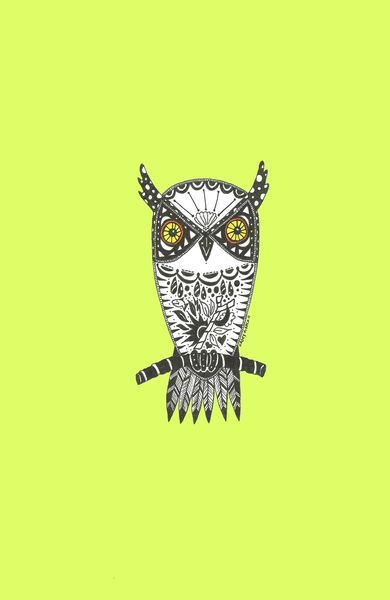 'Little Owl' by Casey Virata