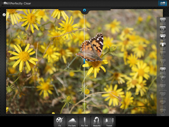 Review Perfectly Clear iOS photo editor both stuns and