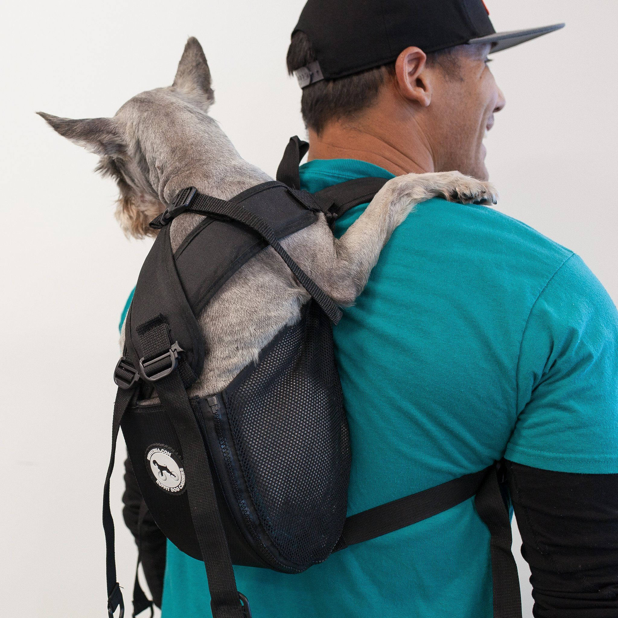 Comfortable Carrier