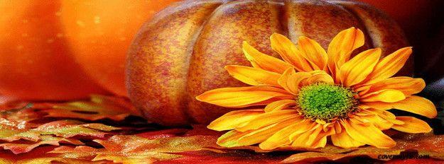 Fall Autumn ~Facebook Cover