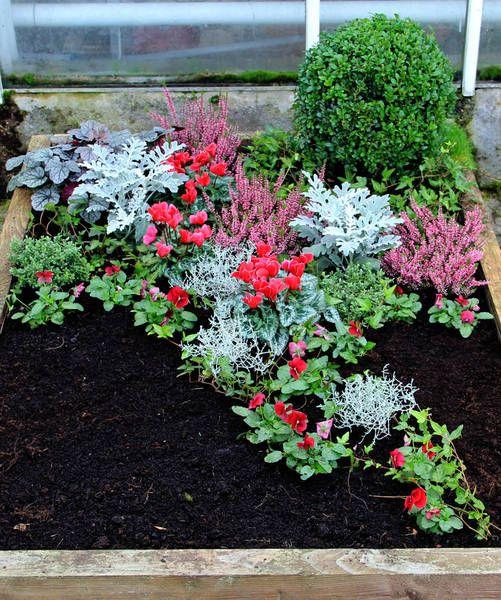 Mustergraber Bepflanzung Grabbepflanzung Herbstbepflanzung