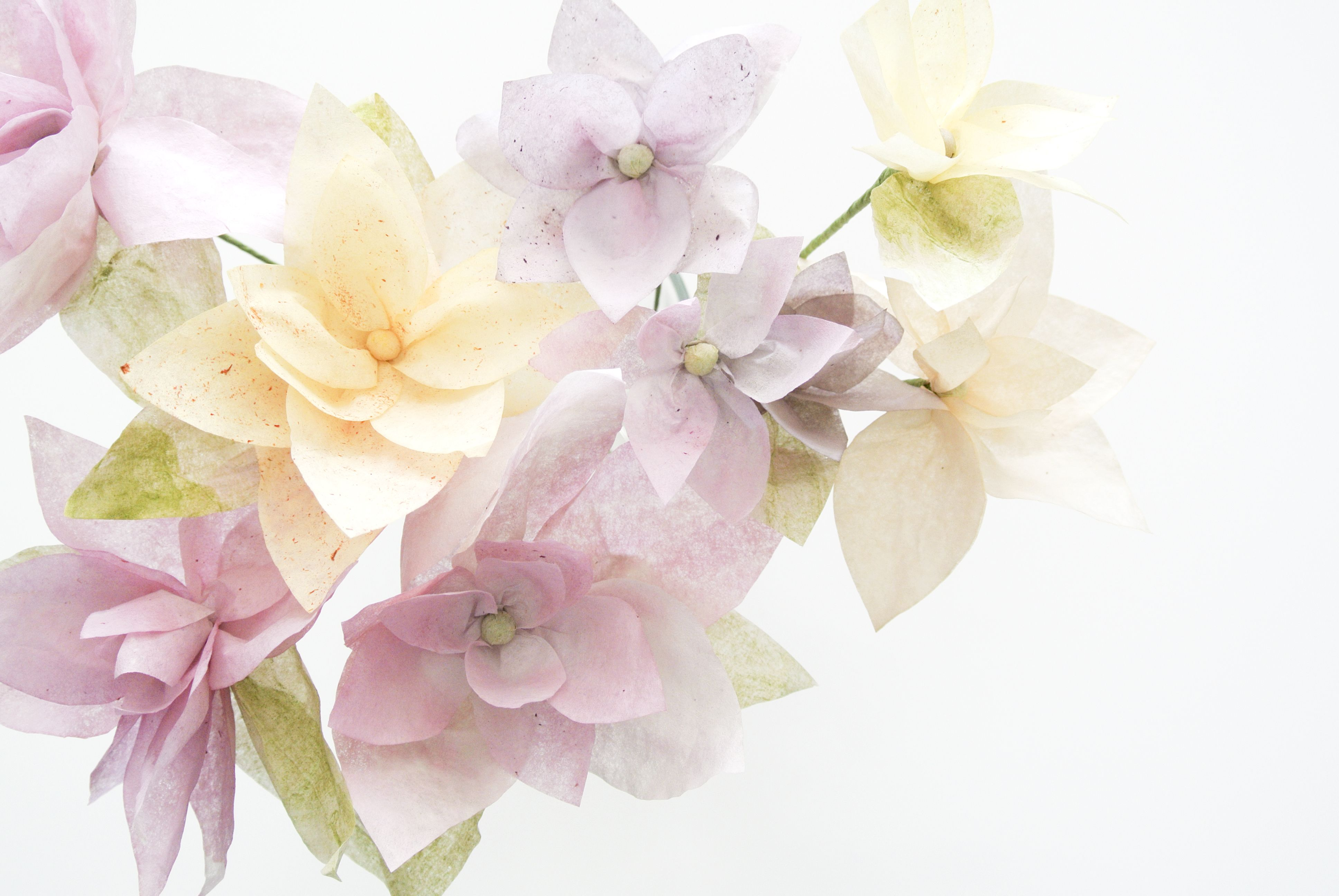 How to Make Scented Paper Flowers With David's Tea Paints - My first Snapguide Post