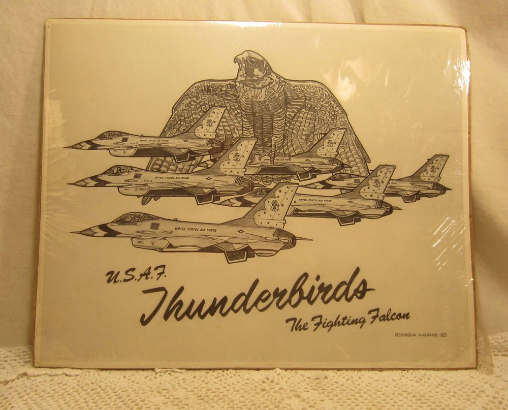 Vintage 16 X 20 Black White Poster Print Usaf Thunderbirds The Fighting Falcon