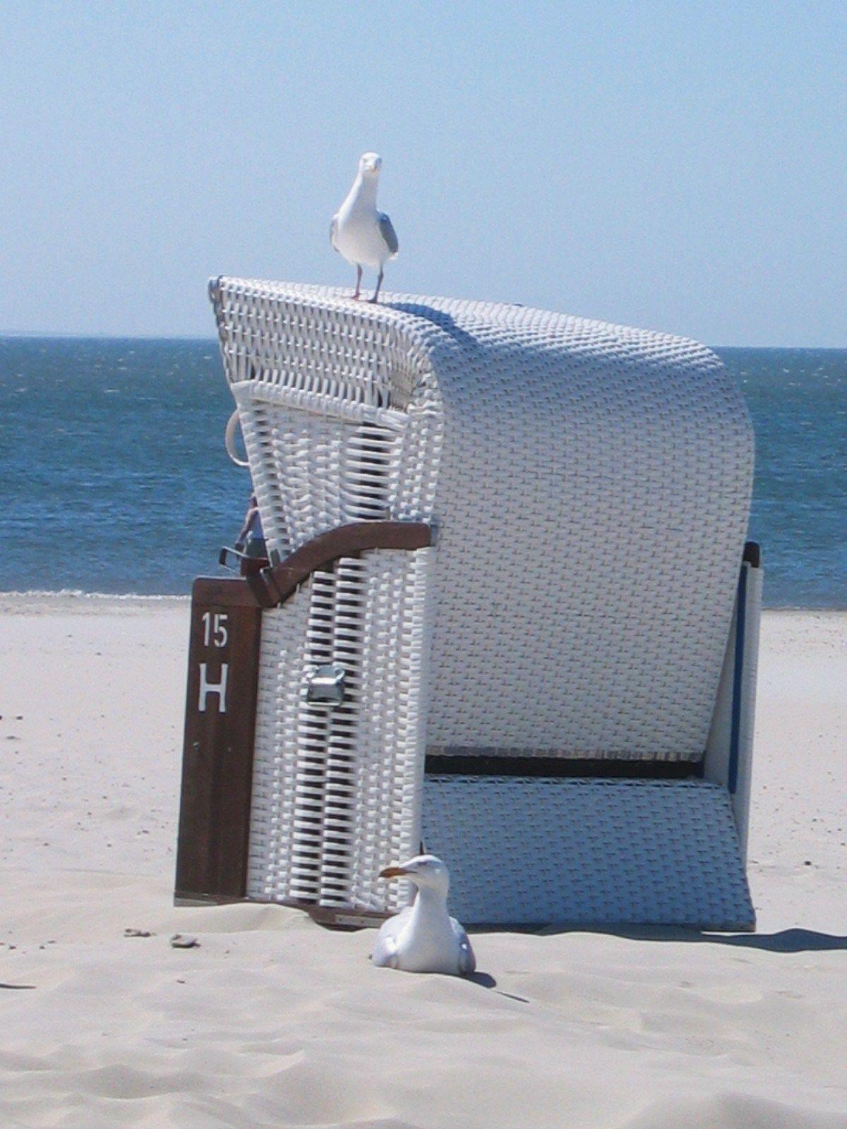 Borkum Ist Immer Eine Reise Wert Lehnen Sie Sich Zuruck In Einem Strandkorb Spuren Sie Die Sonne Auf Ihrer Haut Und Lauschen Sie Den No Borkum Nordsee Strand