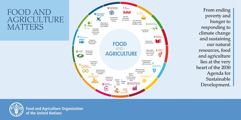 The overlap between food, agriculture, and the