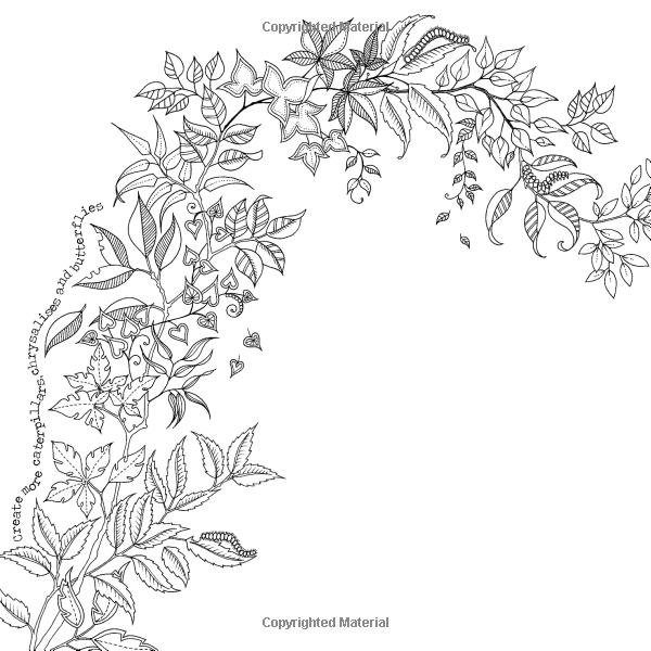 Secret Garden An Inky Treasure Hunt And Coloring Book Johanna Basford Amazon