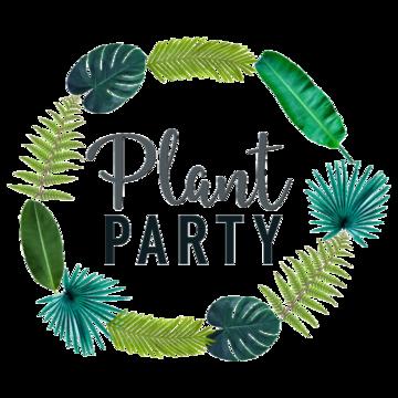 Slavonk & Hortus Terraria Plant party, Plants