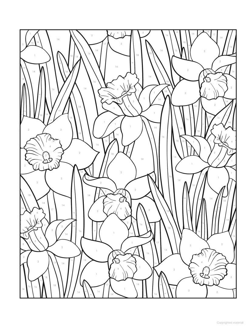 Наши любимые раскраски в формате PDF | Антистресс ...