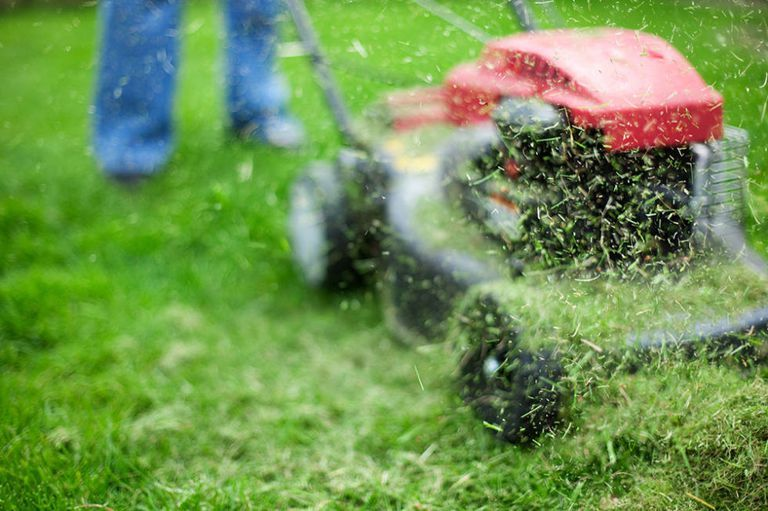 9 things you need to consider before mowing the lawn for the first time this year is part of lawn Mowing Home - A little prep beforehand goes a long way