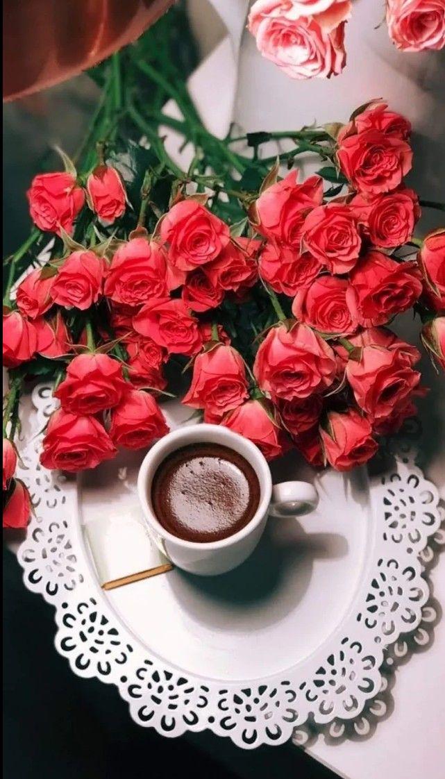 Картинки любимой женщине с добрым утром и большими цветами роз, открытка видео картинка