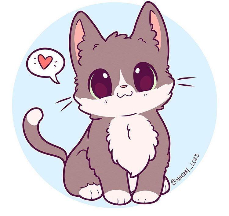 Pin By Jordan Rose On Drawing Kawaii Cat Drawing Cute Kawaii Drawings Cute Kawaii Animals