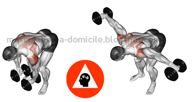 EXERCICES MUSCULATION DELTOIDES | Exercice musculation ...