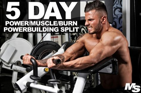 power muscle burn 5 day powerbuilding split  workout