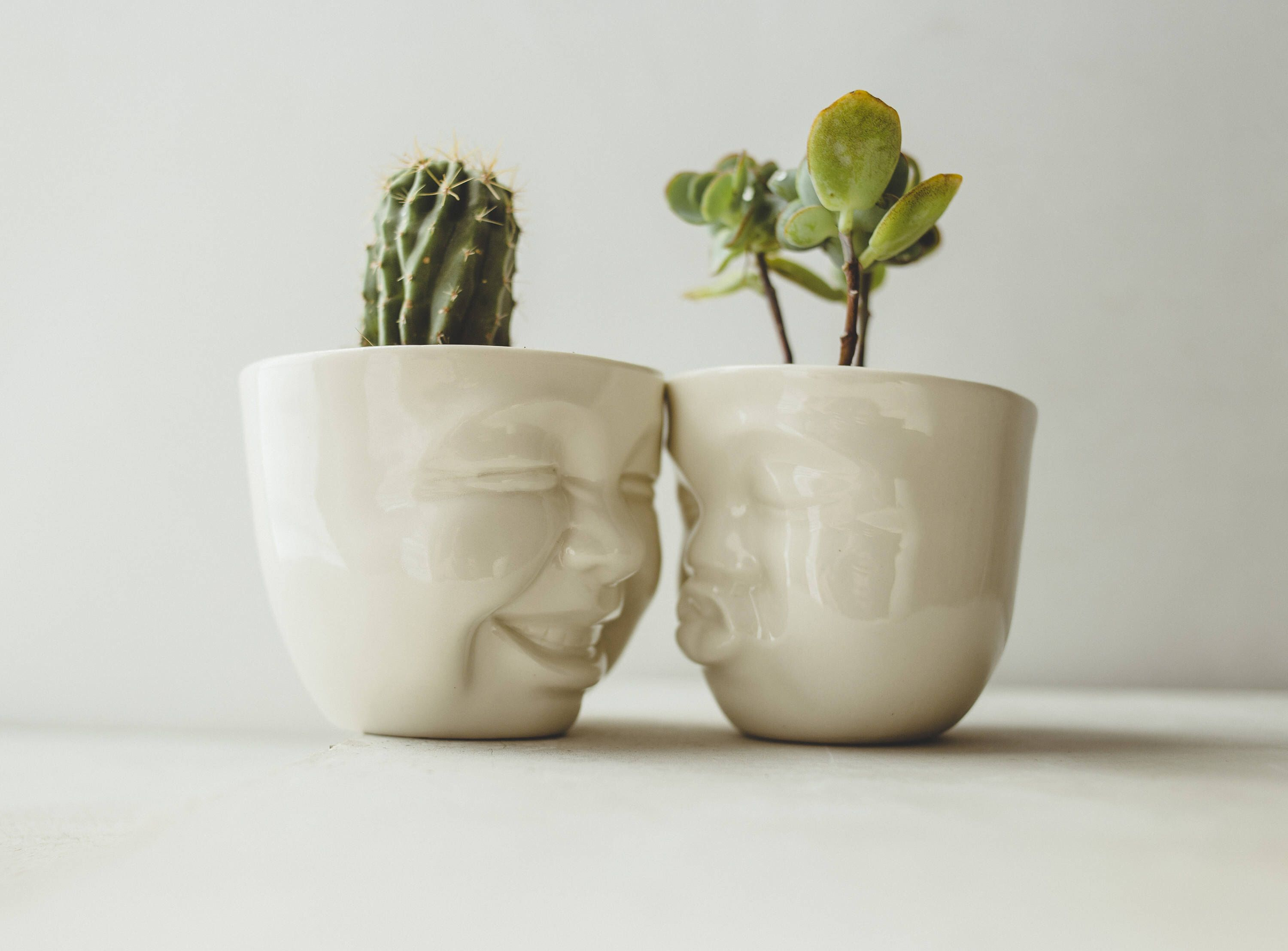 Image result for This cute face planter birthday gift images