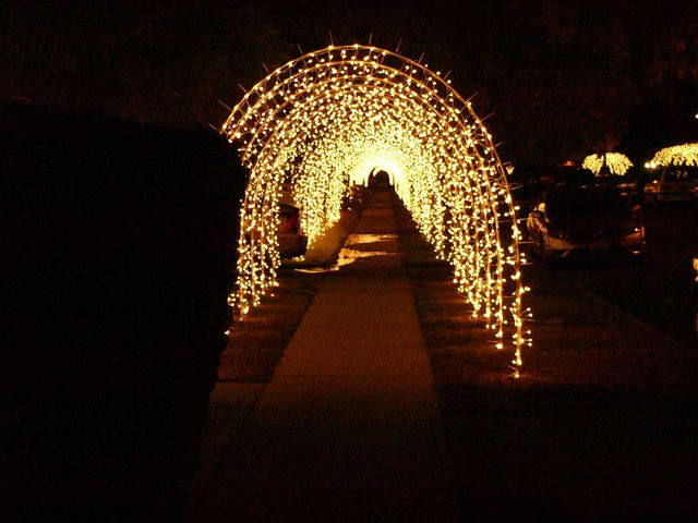 Build your own christmas holiday lighted walkway sidewalk for Sidewalk christmas lights