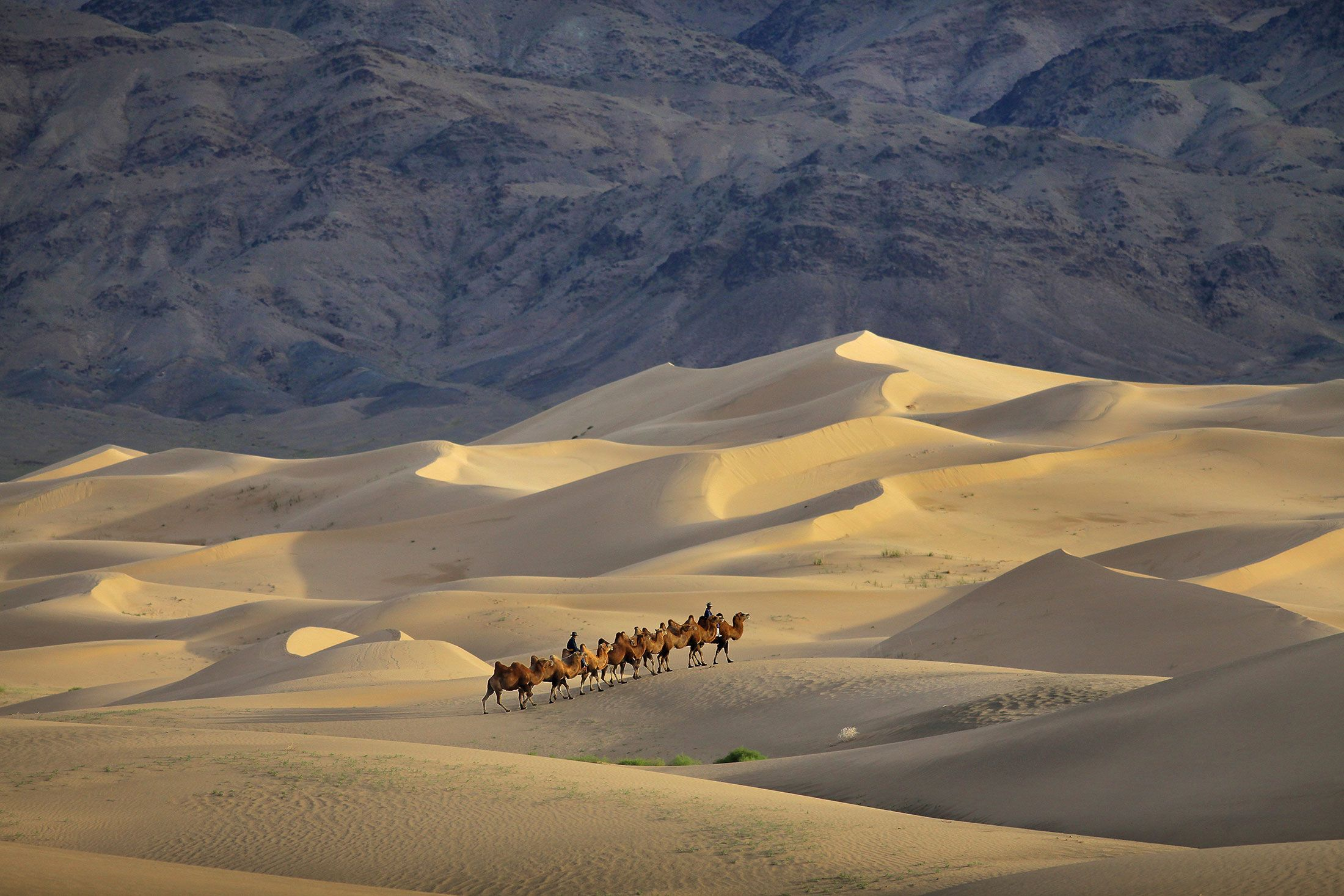 Why You Need To Go To Mongolia Now In 16 Stunning Photos With Images Mongolia Desert Travel Desert Places