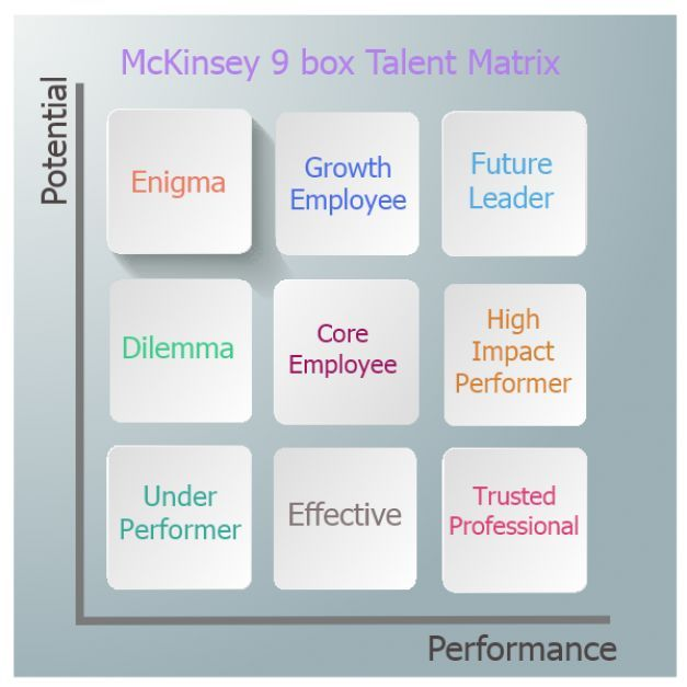 Management  Problems With Mckinsey  Box Talent Matrix
