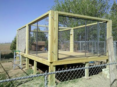 The real apbt dog kennel setups and designs pet for Building dog kennels for breeding