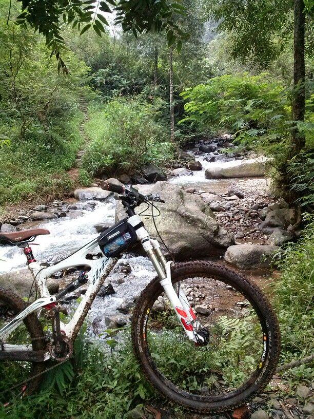 Ibis Mojo at Puncak trail, Indonesia | Mountain biking ...