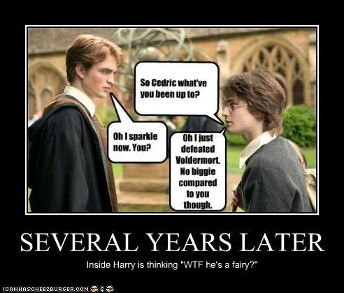 Harry Potter Vs Twilight Photo Years Later Harry Potter Vs Twilight Harry Potter Twilight Harry Potter Fanfiction