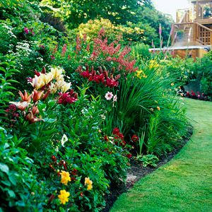 A Tower Of Plants: Day Lilies In The Front For Easy Dead Heading. Dahlias