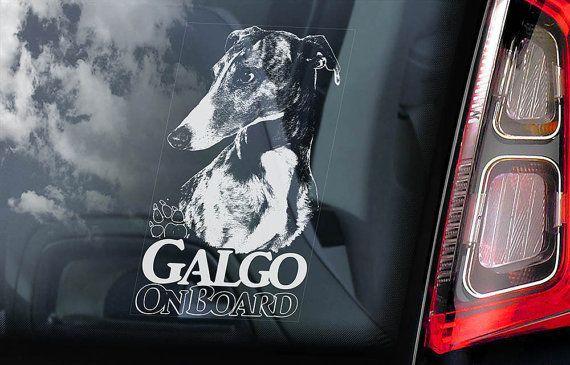 Spanish Greyhound Espanol Sign Decal Car Window Sticker V01 Galgo on Board