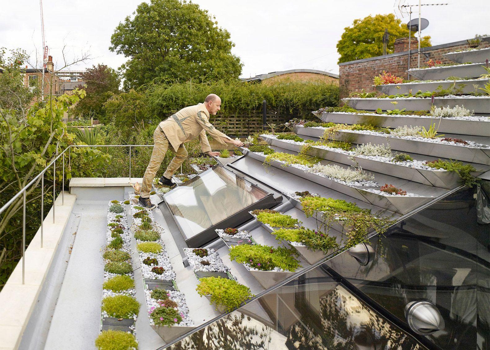 Ziggurat Like Roof In London Supports 800 Sedums Heathers Flowers And Herbs Rooftop Garden Green Roof Roof Garden