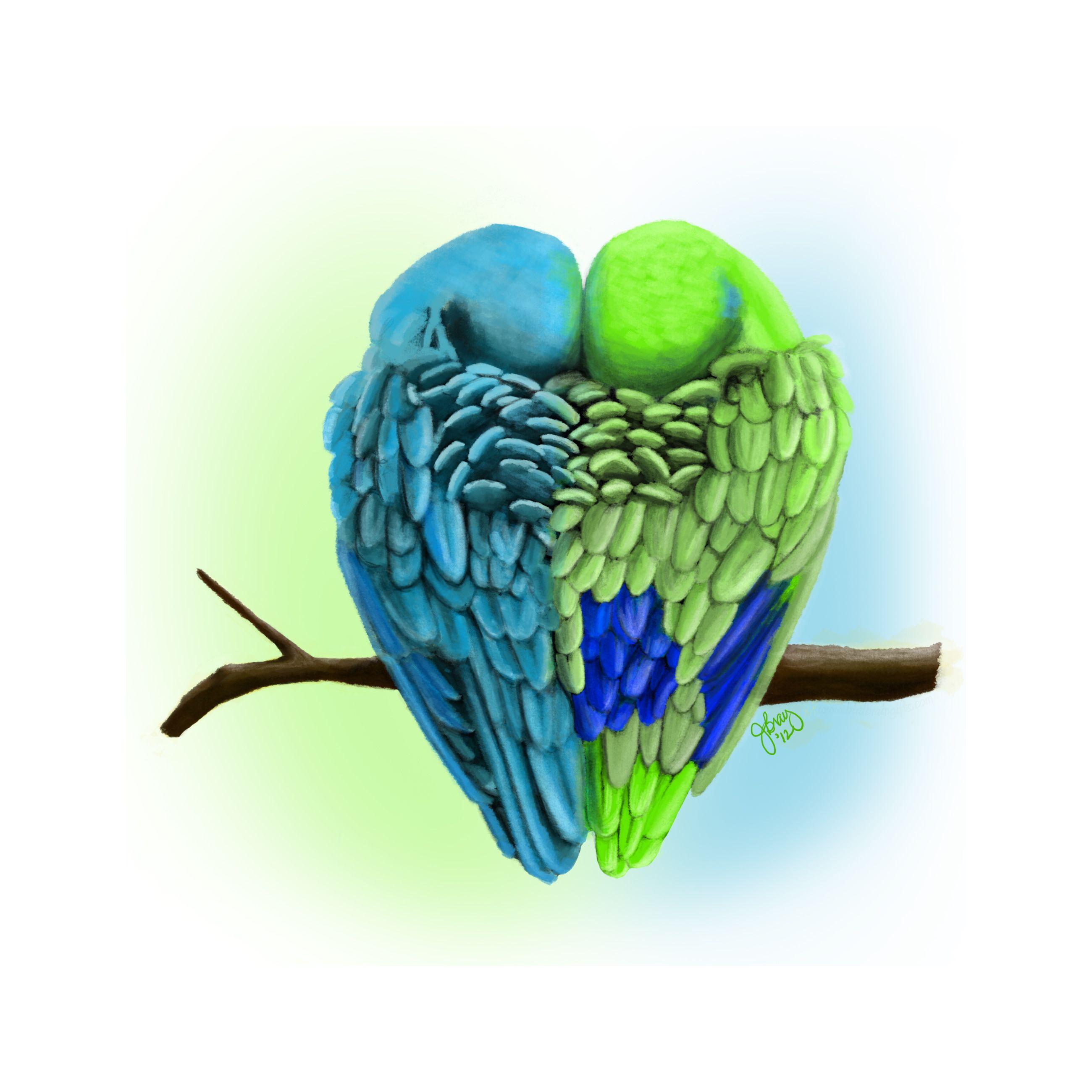 Pacific Parrotlets In Love Digital Oil My Art Pinterest