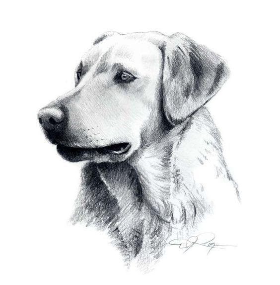 10 Lindos Dibujos A Lapiz De Perros Perros Dibujos A Lapiz